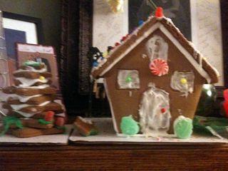 Christmas house for blog
